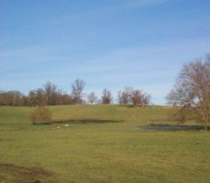 Panorama of the Wimpole Park Site 2002