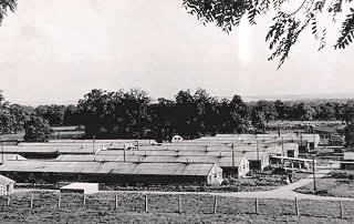 A view overlooking the ex-US Army hospital huts at Wimpole Park. It is thought the image dates around 1950.